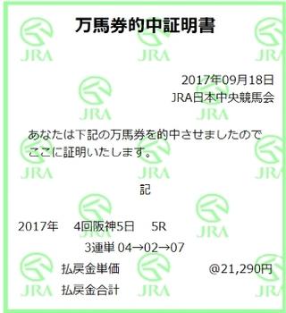 20170918 阪神5R.jpg